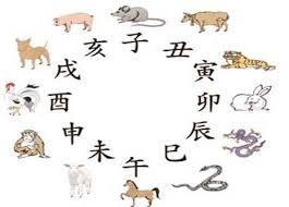 Từ Vựng tiếng Trung về 12 Con Giáp