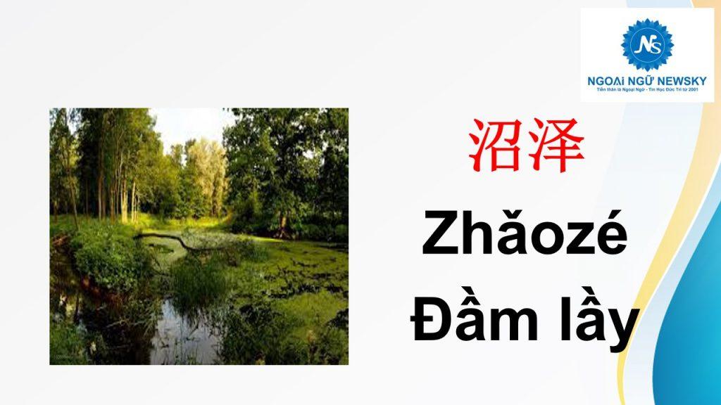 沼泽- Đầm lầy