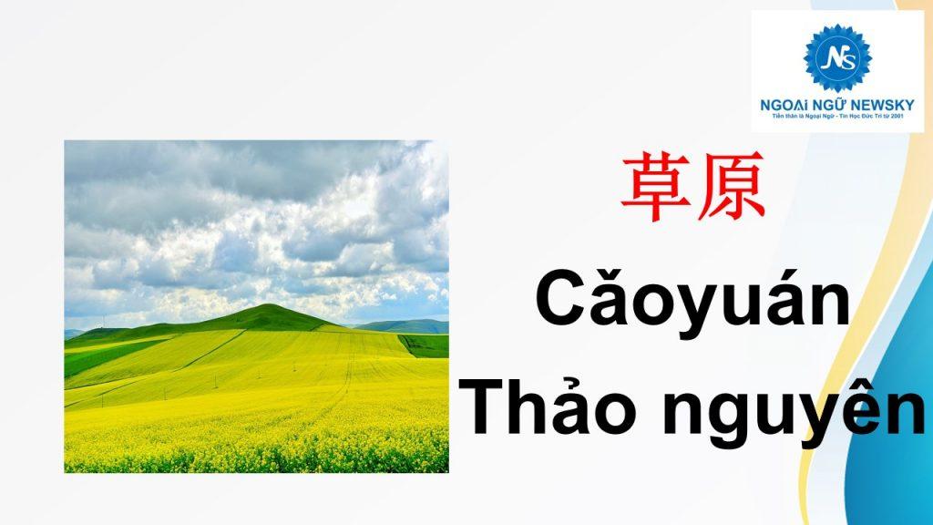草原- Thảo nguyên