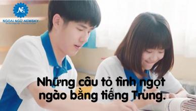nhung-cau-to-tinh-ngot-ngao-bang-tieng-trung