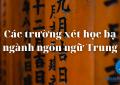 Các trường xét học bạ ngành ngôn ngữ Trung